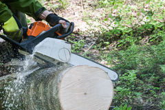 The chainsaw cutting the log Royalty Free Stock Photography