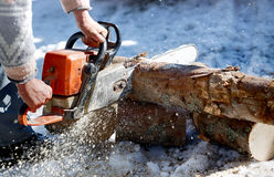 Chainsaw cutting the tree Stock Images