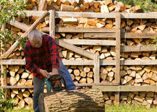 Chainsaw cutting trunk Stock Photography