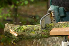 Chainsaw. A chainsaw cutting wood in the garden royalty free stock photo
