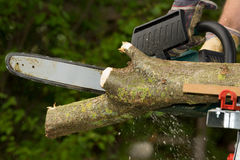 Chainsaw. A chainsaw cutting wood in the garden stock photos