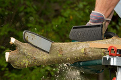 Chainsaw. A chainsaw cutting wood in the garden stock image