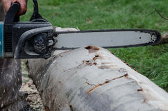 Chainsaw cutting wood Stock Photos