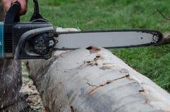 Chainsaw cutting wood. A chainsaw who cut a wood Stock Photos