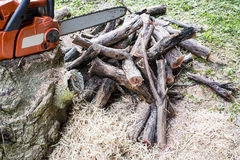 Chainsaw and firewood Stock Photos