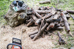 Chainsaw and firewood Stock Photography