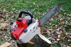 chainsaw fiszorka drzewo rozebranego Zdjęcia Stock
