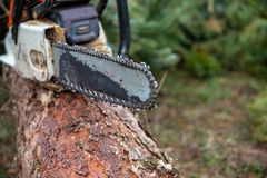 Chainsaw on fresh felled tree. Worn chainsaw on fresh felled tree stock image