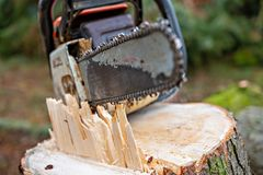 Chainsaw on fresh tree stump. Worn chainsaw on fresh tree stump stock photo