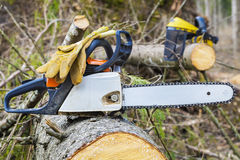 Chainsaw and gloves on tree. In forest Stock Photos