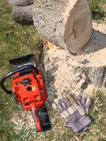 Chainsaw on ground near log and stump. Large tree with red chainsaw and gloves on ground Royalty Free Stock Photos