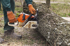 Chainsaw in a hands. Chainsaw in a hand of the lumberjack royalty free stock photos