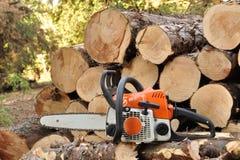 Chainsaw i skogen Arkivfoto