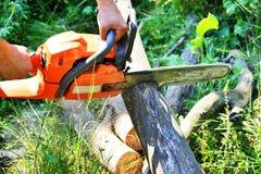 Chainsaw klippta träjournaler Arkivbild