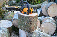 Chainsaw and logs Stock Photo