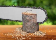 Chainsaw Lumberjack Stock Photography