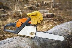 Chainsaw och handskar på träd i förstörd skog Arkivbilder