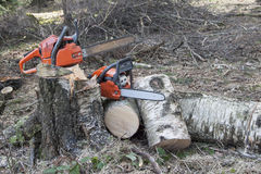 Chainsaw ready to work Stock Images