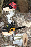 Chainsaw, safety equipment and cutting tree Stock Photo