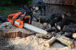 Chainsaw and sawed wood. Chainsaw and cut wood on the ground in the forest Royalty Free Stock Photography