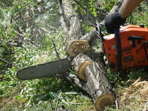 Chainsaw. Sawing wood with a chainsaw,cut firewood for the winter Royalty Free Stock Photo