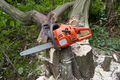 Chainsaw stump royalty free stock photo