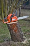 Chainsaw on a stump Royalty Free Stock Photo