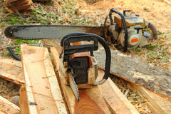 Chainsaw on the woods, Royalty Free Stock Photo