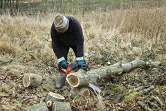 Chainsaw work Stock Images