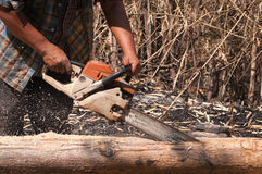 Chainsaw. The worker trimming wood with chainsaw Royalty Free Stock Photo