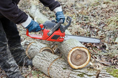 Chainsaw working Stock Photo