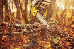 Chainsaw. Royalty Free Stock Photo