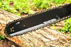 Chainsawen klipper en journal som ligger p? jordningen Kedjan roterar royaltyfria bilder