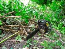 Chainsawlögnerna på jordningen bland snittfilialer av en buske med grön lövverk royaltyfria foton