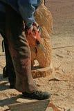 Chainsawskulptör Carving Wood Animal Fotografering för Bildbyråer