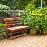 Chair. Single wooden chair in the small garden Stock Images