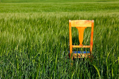 The chair Royalty Free Stock Image