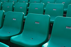Chair. Stadium chairs neatly lined with beautiful Royalty Free Stock Image