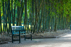 Chair in bamboo park. Stock Image