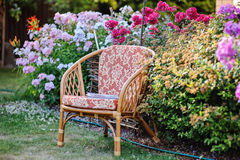 Chair in blooming summer garden Royalty Free Stock Images