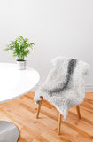 Chair covered with sheepskin, and plant on a white table Stock Photography