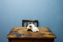 Chair and desk with a goat skull Royalty Free Stock Photo