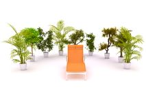 Chair enclosed by plants Royalty Free Stock Image