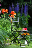 Flowers garden chair Royalty Free Stock Photography