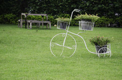 Chair in the garden. Wooden chairs in the lawn Royalty Free Stock Image