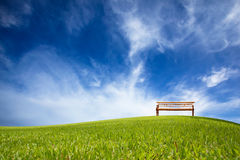 Chair and green field Royalty Free Stock Photo