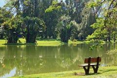 Chair lake garden Stock Image