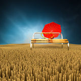 Chair in meadow. Royalty Free Stock Photo