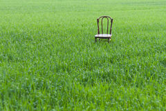 Chair in Meadow Royalty Free Stock Images