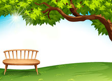 A chair near the tree Stock Image